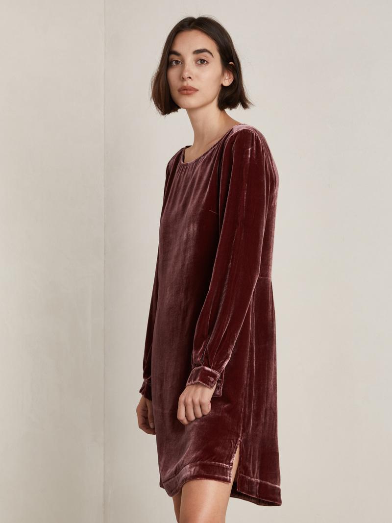 Liza Velvet Dress
